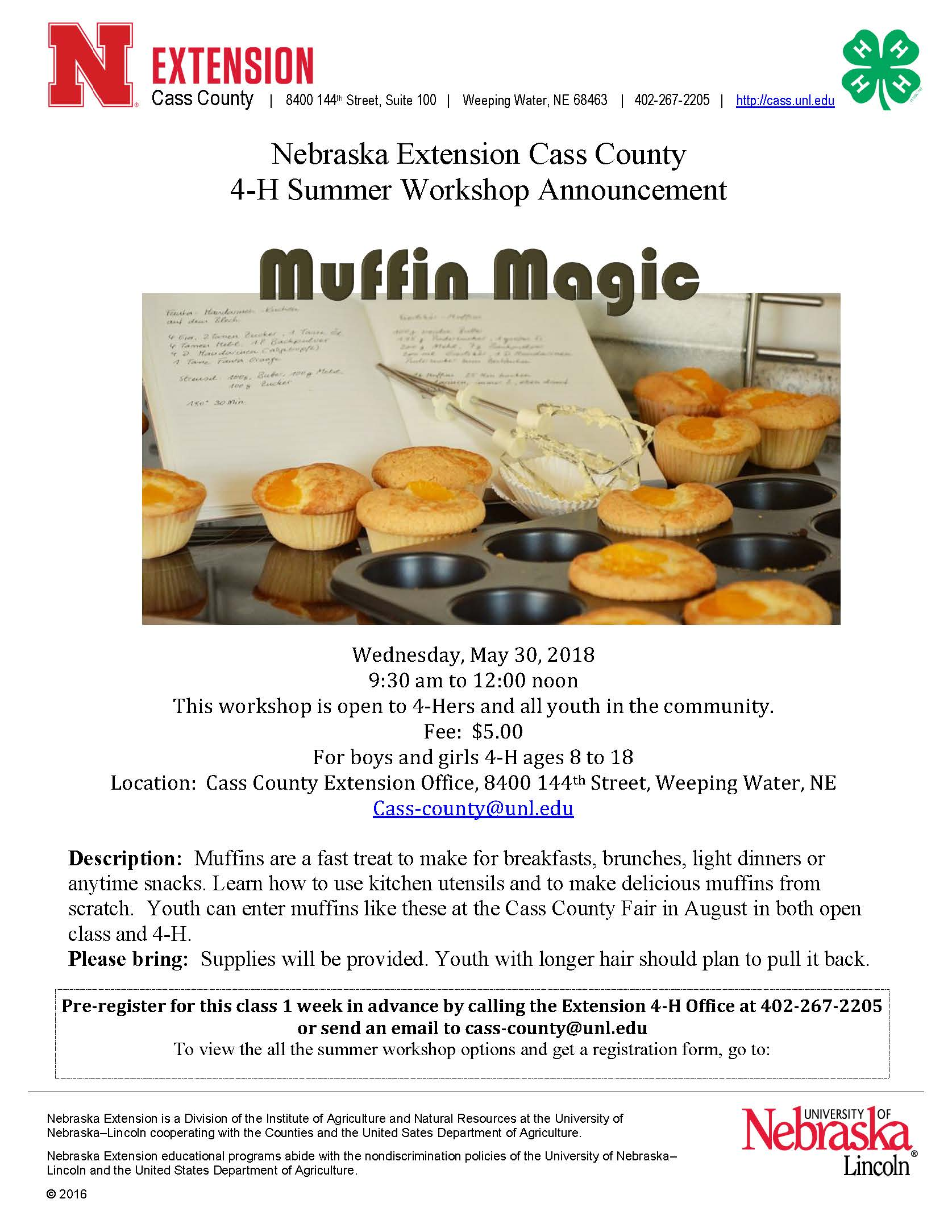Muffin Magic Workshop 2018